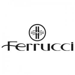 Ferrucci